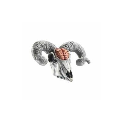 Latex Rams Skull Prop with Exposed Brain
