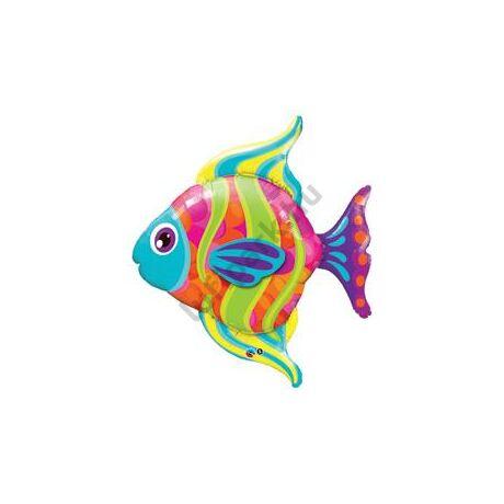 43 inch-es Színes Halacska - Fashionable Fish Super Shape Fólia Léggömb